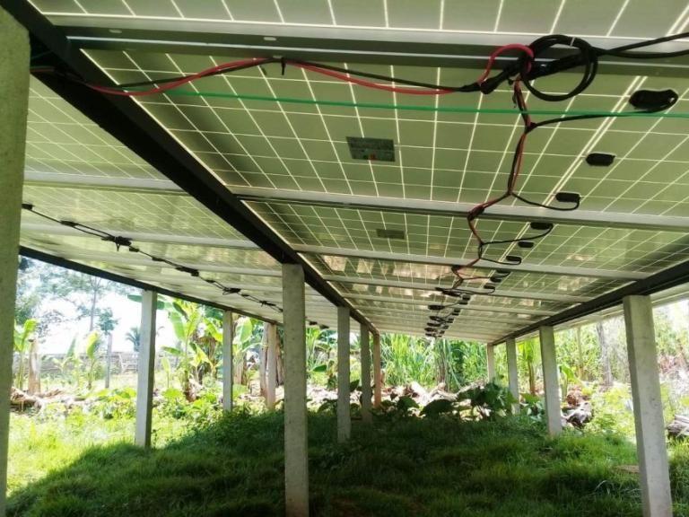 Homem do campo adere geração e consumo de energia renovável