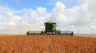 Agronegócio de Rondônia supera crescimento médio nacional