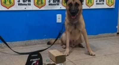 Morador de Cerejeiras, rapaz de 20 anos é preso em ônibus, transportando quase 3 kg de maconha