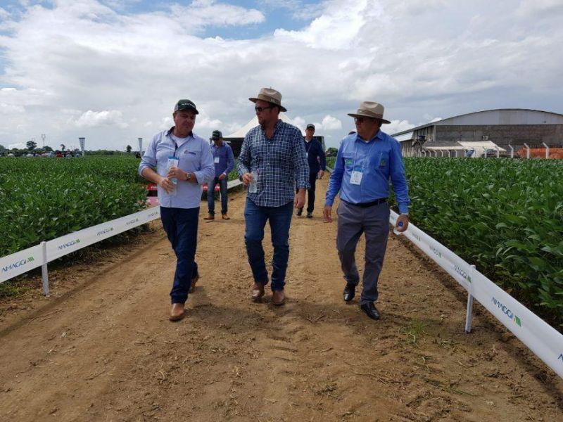Rondônia deve produzir 1,2 milhões de toneladas de soja na safra 2019/2020
