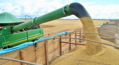 Rondônia deve produzir mais de 1 milhão de toneladas de soja