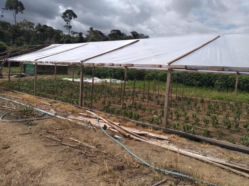 Vice-governador José Jodan cumpre agenda em Alto Paraiso Jodan visitou a Emater, propriedade rural, prefeitura e feira livre do produtor