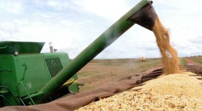 Ipea prevê crescimento maior do PIB do setor agropecuário