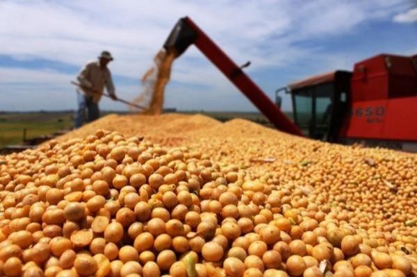 Rondônia pode bater recorde da safra de grãos em 2 milhões de toneladas