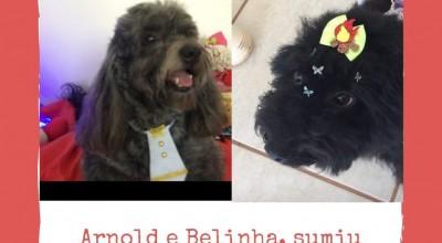 Arnold e Belinha estão desaparecidos em Rolim