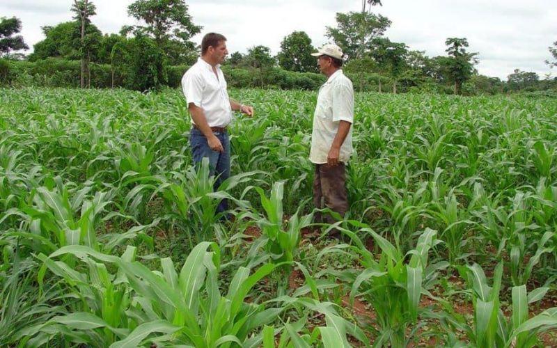 Coronavírus: produtores rurais e trabalhadores do campo também devem se proteger