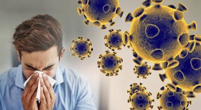 MG investiga excesso de corpos e cogita exumação para testes