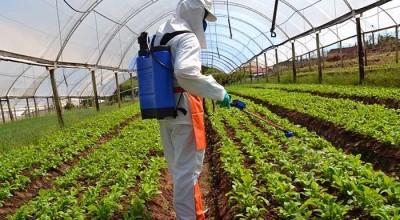 Ministério da Agricultura libera registro de mais 16 agrotóxicos
