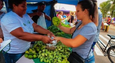 CORONAVÍRUS - Governo recomenda boas práticas aos feirantes de Rondônia para garantir o abastecimento e evitar impactos no agronegócio