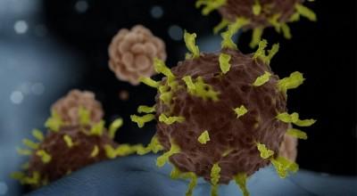 Prefeitura diz que mulher de 30 anos testou positivo para coronavírus em Porto Velho; Sesau não confirma