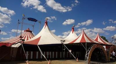 Mais de 500 circos são fechados devido a pandemia do novo coronavírus e 10 mil artistas ficam sem renda