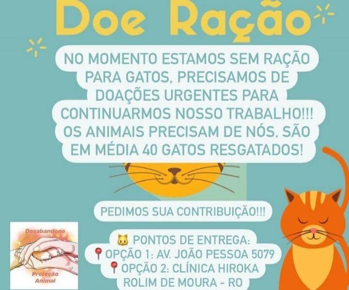 Grupo Desabandone de proteção animal necessita de doações de ração para gatos