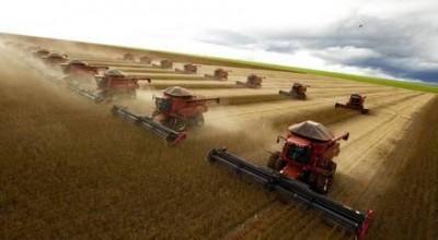 Brasil ganha posto de maior produtor de soja do planeta