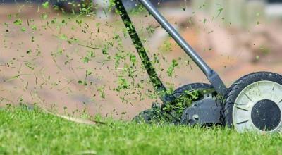 Cortador de grama ou roçadeira, qual a melhor opção?