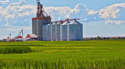 Plano Safra deve movimentar setor agrícola