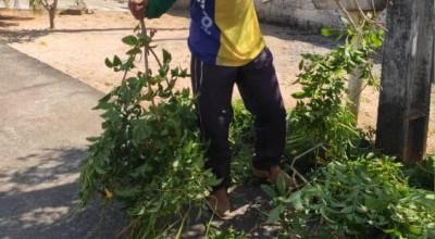 Vídeo de 'Jardineiro cantor' de Santa Luzia D'Oeste (RO), bate 3 milhões de visualizações em Facebook