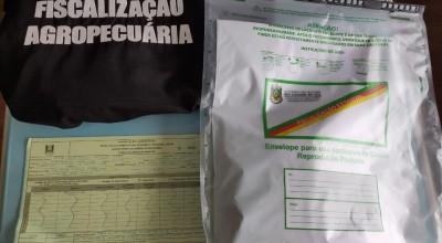 Ministério investiga sementes enviadas com produtos comprados pela internet