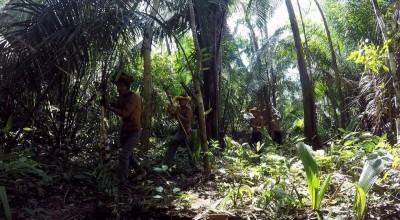 Rondônia passa de 1,3 mil casos de indígenas com Covid-19 e soma 28 mortes, aponta entidade