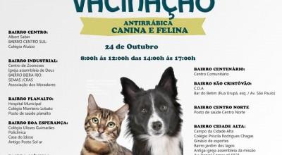 Rolim de Moura realiza Campanha de Vacinação Antirrábica para cães e gatos