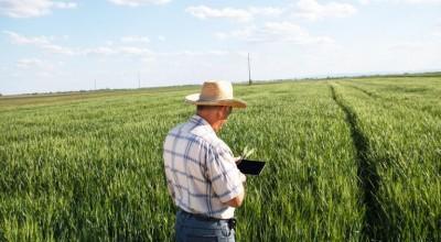 Exportações do agronegócio aumentaram 4,8% no último mês
