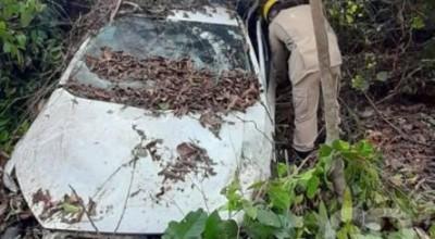 Mato Grosso, criança de 09 anos morre após carro atingir capivara