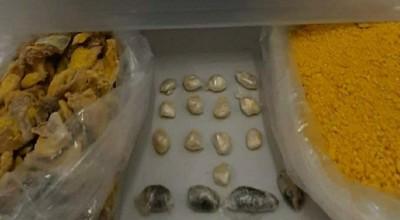 Mulheres são presas ao levarem farofa com drogas para detentos em penitenciária de Porto Velho