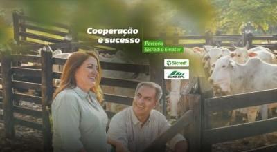 Parceria entre Sicredi e EMATER-RO beneficiará agricultura familiar de Rondônia
