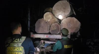 Polícia Federal deflagrou em Vilhena a Operação Pertinacia para combate de exploração ilegal de madeira