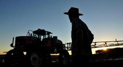 Produção de grãos pode superar 268 milhões de toneladas
