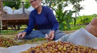 Cafeicultora de Novo Horizonte é premiada em 1º lugar no 'Coffee of The Year 2020'