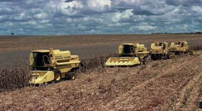 Ipea prevê menor crescimento do agronegócio