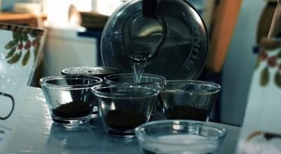 Mulheres ficam no topo da 5ª edição do concurso de qualidade do café de Rondônia