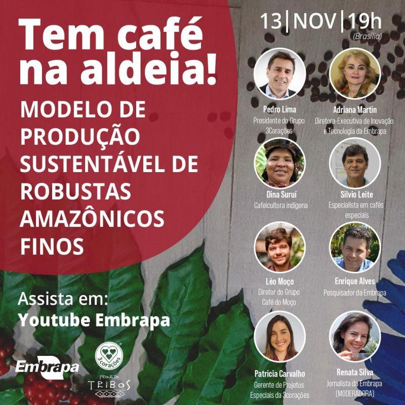 Robusta Amazônico, da aldeia para às mesas brasileiras