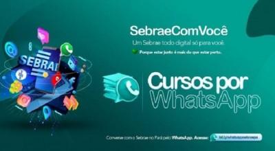 Sebrae lança 15 opções de cursos online gratuitos