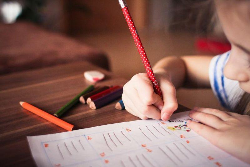 Ano letivo inicia de forma remota e secretário da Educação cogita retorno de aula presencial em RO:
