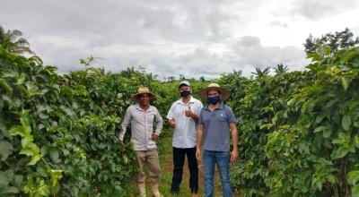 Equipe técnica da Semagri oferece assistência a produtor de Maracujá em Rolim de Moura