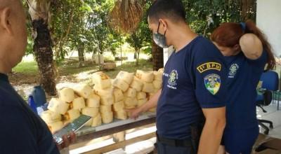 Mais de 190 kg de queijos vencidos são apreendidos em RO