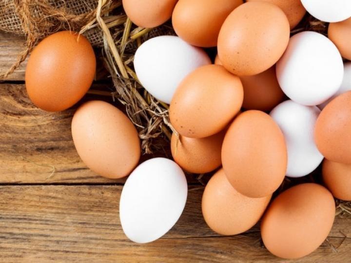 Exportações de ovos mantém alta de 142,5%