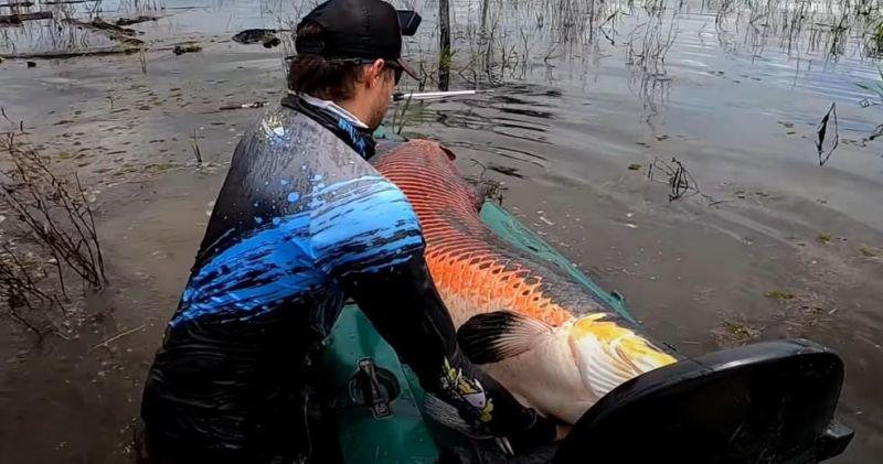 Pescador pegou pirarucu de 2 metros e 100 kg em RO
