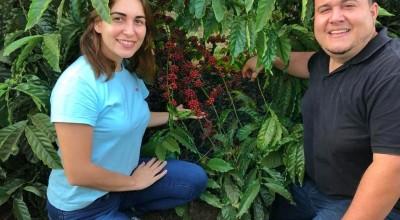 Cacoalense campeão de qualidade do café também é referência na produção de leite