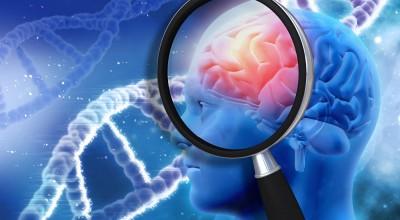 COVID-19: Pesquisas mostram que cérebro precisa de check-up
