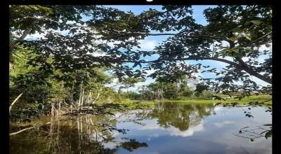 Prefeitura de Rolim de Moura divulga vencedores do concurso de fotografia e vídeo
