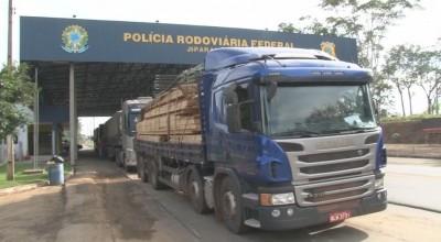 Quase 500 m³ de madeira são apreendidos no maior flagrante feito em operação da PRF em RO