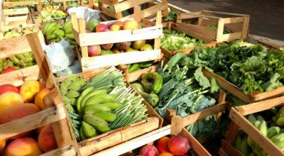 RO: Produtores rurais entregam produtos a programa federal de aquisição de alimentos