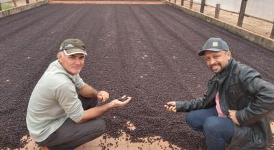 SEMAGRI de Rolim de Moura leva cafeicultores para visita técnica em Cacoal