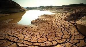 Escassez hídrica impacta pecuária