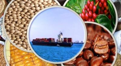 Exportações do agronegócio cresceram 20,9%