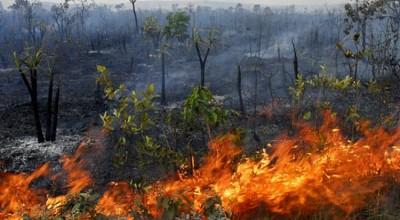 Emater reforça orientação para prevenção às queimadas
