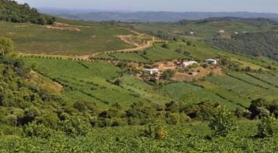 Governo vai regularizar 13 mil lotes rurais em 28 municípios de Rondônia