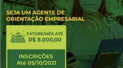 Sebrae lança edital para seleção de agentes de negócios